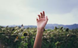 Selective Focus Photography of Right Human Hand Stock Photography