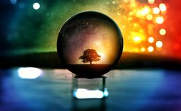 Selective Focus Photography of Water Globe With Tree Illustration Stock Image