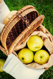 Selective Focus on Picnic Wattled Basket Stock Photos