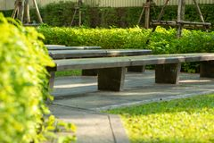 Selective focus picture of empty concrete benches in outdoor park with blurred green bush in background.  royalty free stock images