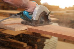 Selective focus on piece of wood is being cut with electric circular saw against hands of worker in carpentry workshop with sunshi Royalty Free Stock Image