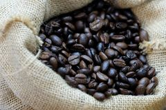In selective focus of plenty roasted coffee beans in a brown bag royalty free stock photos
