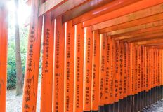 Red Tori Gate at Fushimi Inari Shrine in Kyoto, Japan. Royalty Free Stock Photography