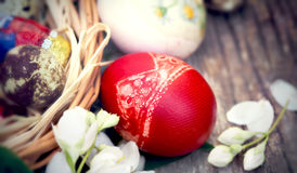 Selective focus on red Easter egg Stock Images
