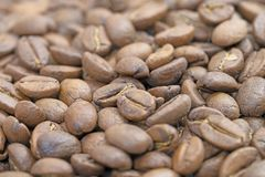 Selective focus of roast coffee bean f royalty free stock image