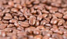 Selective focus of roasted coffee beans Royalty Free Stock Photography
