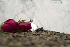 Selective focus of roses flower and roast coffee bean on the wood floor for background and greeting cards stock photo