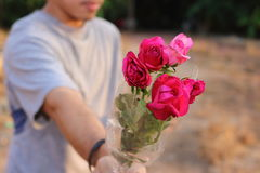Selective focus and shallow depth of field of a beautiful bouquet of red roses are given with some person by young man. Love and r Stock Image