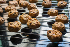 Selective focus with shallow depth of field on home made cookies Stock Image