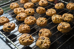 Selective focus with shallow depth of field on home made cookies Stock Images