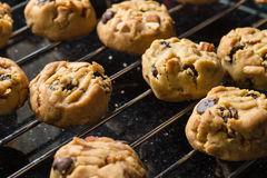 Selective focus with shallow depth of field on home made cookies Stock Photography