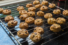Selective focus with shallow depth of field on home made cookies Royalty Free Stock Photos