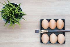 Selective focus of six Eggs in black square plate with a brush Stock Photography