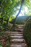Selective focus of Stairs made of natural soils royalty free stock photos