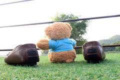 Selective focus at Teddy bear sitting on the grass with brown sh Stock Photography