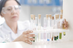 Selective focus of a test tube rack Stock Image