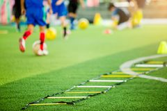 Selective focus to ladder drills on green artificial turf with blurry coach and kid soccer are training, blurry kid soccer jogging. Between marker cones and royalty free stock photography