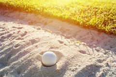 Selective focus of white golf ball on the green field and sand b. Unker with sunlight stock photo