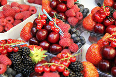 Selekcyjna świeża owoc w plastikowych zbiornikach Zdjęcia Royalty Free
