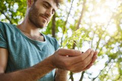 Selekcyjna ostrość Zamyka w górę portreta młoda ciemnoskóra samiec z brodą w błękitnego koszulowego mienia małej roślinie w rękac zdjęcia royalty free