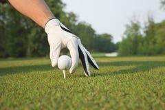 Selekcyjny foccus golfiści wręcza umieszczać piłkę na trójniku zdjęcia royalty free