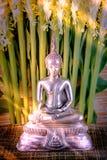 Selektiv fokus av den buddha statyn med flo för mjukt ljus och vit Arkivbild