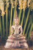 Selektiv fokus av den buddha statyn med flo för mjukt ljus och vit Arkivfoton