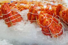Selektiv fokus av konungkrabbabenet på is på fiskmarknaden Delen av konungkrabbabenet som är klart att sälja på skaldjur, shoppar arkivfoton