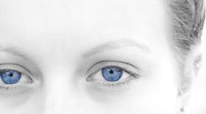 Selektiva blått royaltyfria foton