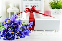 Selektiver Fokus auf Irisblumen, auf dem Hintergrundweißgeschenk Stockfoto