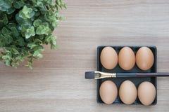 Selektiver Fokus von sechs Eiern in der Platte des schwarzen Quadrats mit einer Bürste Stockbild