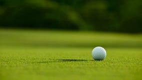 Selektiver Fokus weißer Golfball nahe Loch auf grünem Gras gutes f stockfotos