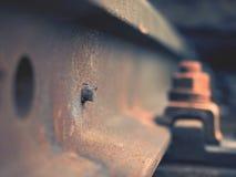 Selektivt fält av fokusen Detalj av rostiga skruvar och muttern på gammalt järnvägspår Royaltyfri Bild