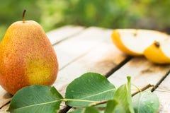 selektivt för nya naturliga pears för bakgrundsfokus moget dof Fotografering för Bildbyråer