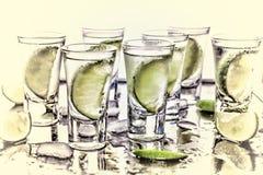 Selektivt fokusera Ginuppiggningsmedel med limefruktkilar royaltyfria bilder