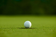 Selektivt fokusera near hål för vit golfboll på goda f för grönt gräs royaltyfri fotografi