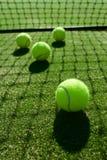 Selektivt fokusera skugga för ljus för tennisboll tillbaka på tennisgräs c arkivfoton