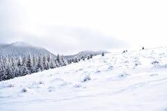 Selenar landskap på rumänska berg Arkivfoton