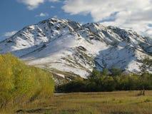 Selenge river - Mongolia landscape Stock Images