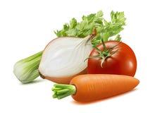 Seler, cebula, marchewka, pomidor Zupni składniki odizolowywający na białym tle obrazy stock