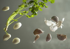 Seler i czosnek na szklanej powierzchni Zdjęcie Stock