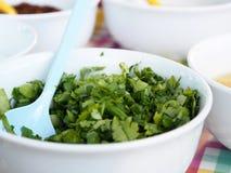 Selerowego Kolendrowego Cilantro Zielona cebula pokrajać mieszającą Zdjęcie Royalty Free
