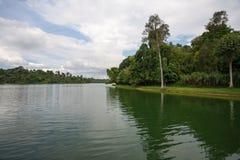 上部Seletar水库在新加坡 库存图片