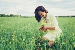 Selezionamento dei wildflowers gialli Fotografia Stock Libera da Diritti