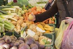 Selezionamento delle verdure organiche sul servizio fotografia stock libera da diritti