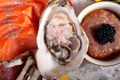 Selezione choice dell'assortimento di miscuglio dei sushi freschi immagine stock libera da diritti