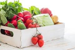Selezione degli ortaggi freschi dal mercato degli agricoltori Fotografie Stock Libere da Diritti