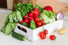 Selezione degli ortaggi freschi dal mercato degli agricoltori Fotografie Stock