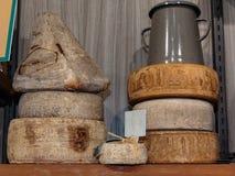 Selezione dei tipi differenti di bottiglie di vino e del formaggio Immagine Stock Libera da Diritti