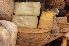 Selezione dei tipi differenti di bottiglie di vino e del formaggio Fotografia Stock Libera da Diritti